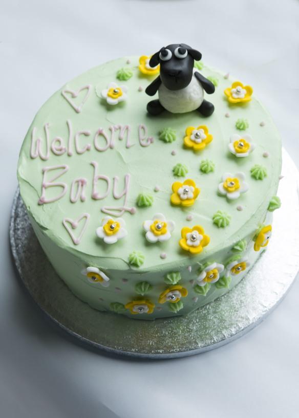 20160123_Anna's_baby_shower_cake_0014