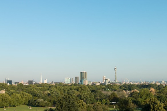 20160720_Primrose_hill_sunset_0471
