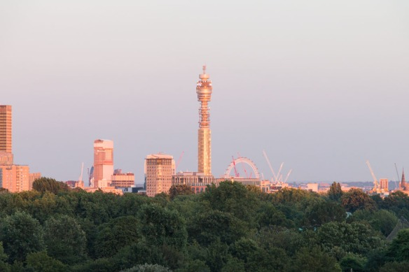 20160720_Primrose_hill_sunset_0511