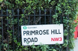 20160720_Primrose_hill_sunset_0545